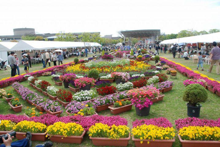 花と緑のフェスティバル 末広中央公園