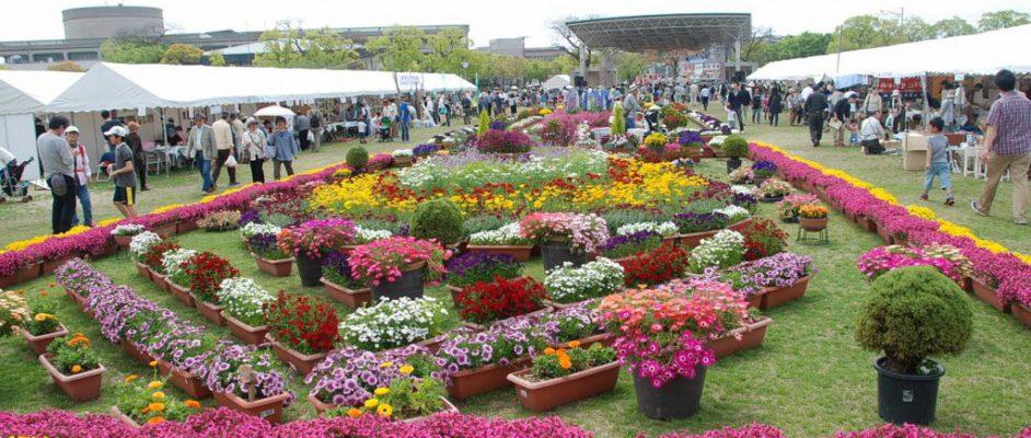 花と緑のフェスティバル(末広中央公園)