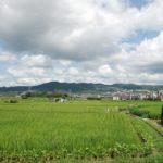 安倉の広い畑と山並み