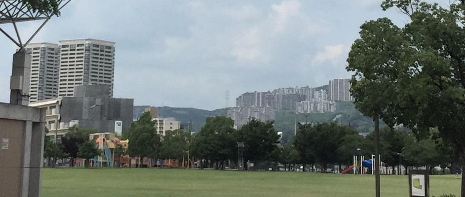 末広中央公園からすみれガ丘方面のマンション群を望む風景