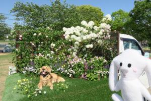軽トラック上に作られたミニ庭園(生い茂る緑を背景に犬のオブジェや白やピンクの花々)