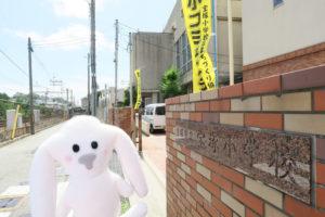 宝塚小学校の門の前にいるまちキョン。宝小コミュニティの幟が門の内側両脇に2本立っている