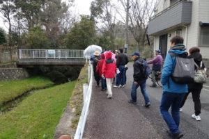 ほたる等の生息地、保護地とされる小仁川を、観賞しながらを歩く参加者。