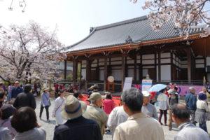 毫摂寺の本堂前に設けられたステージの周りに、ステージを見ようとする人たちが集まってきています。ステージの後ろに本堂、左右にはステージを囲むように桜が写っています。