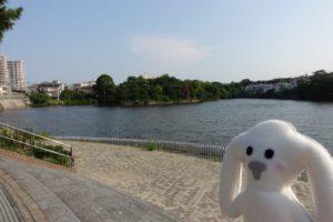 弁天池親水公園の風景。弁天池とまちキョン。