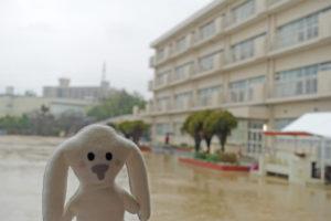 「防災訓練」の会場、安倉北小学校。あいにくの雨で水浸しになったグラウンドの前に立つまちキョン。