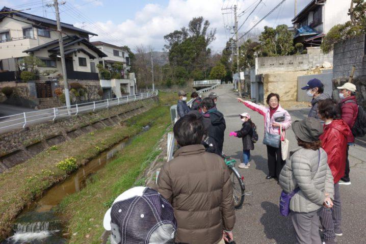 仁川に注ぐ小さな川、小仁川(こにがわ)の川沿い。先頭を歩くガイドの女性(宝塚文化財ガイドソサエティの古村さん)が、川の方を指差して説明をしています。参加者の皆さんが立ち止まって、その説明を聞いています。参加者の中には小学生低学年ぐらいの小さな子どもの姿もあります。